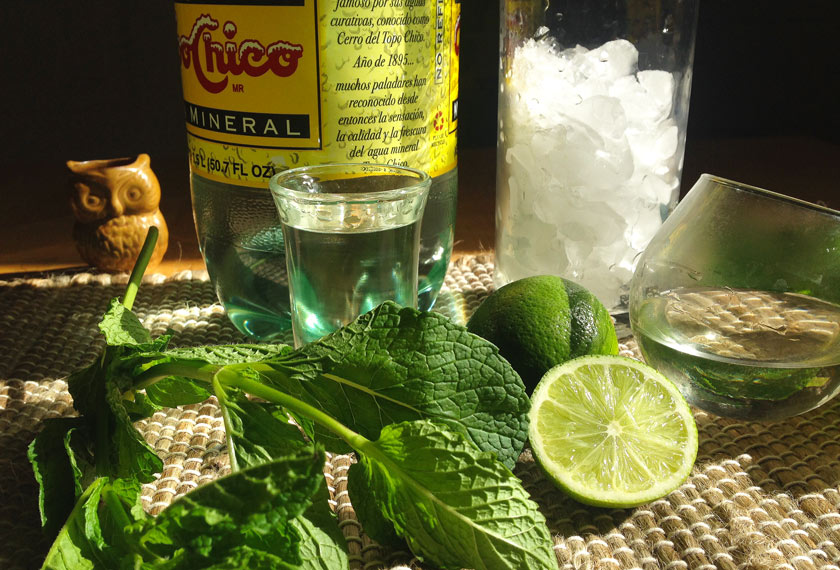 Mint Mojito Ingredients